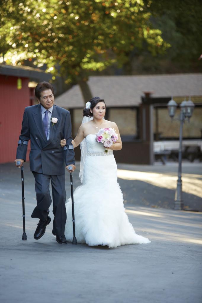 Dad and the Bride