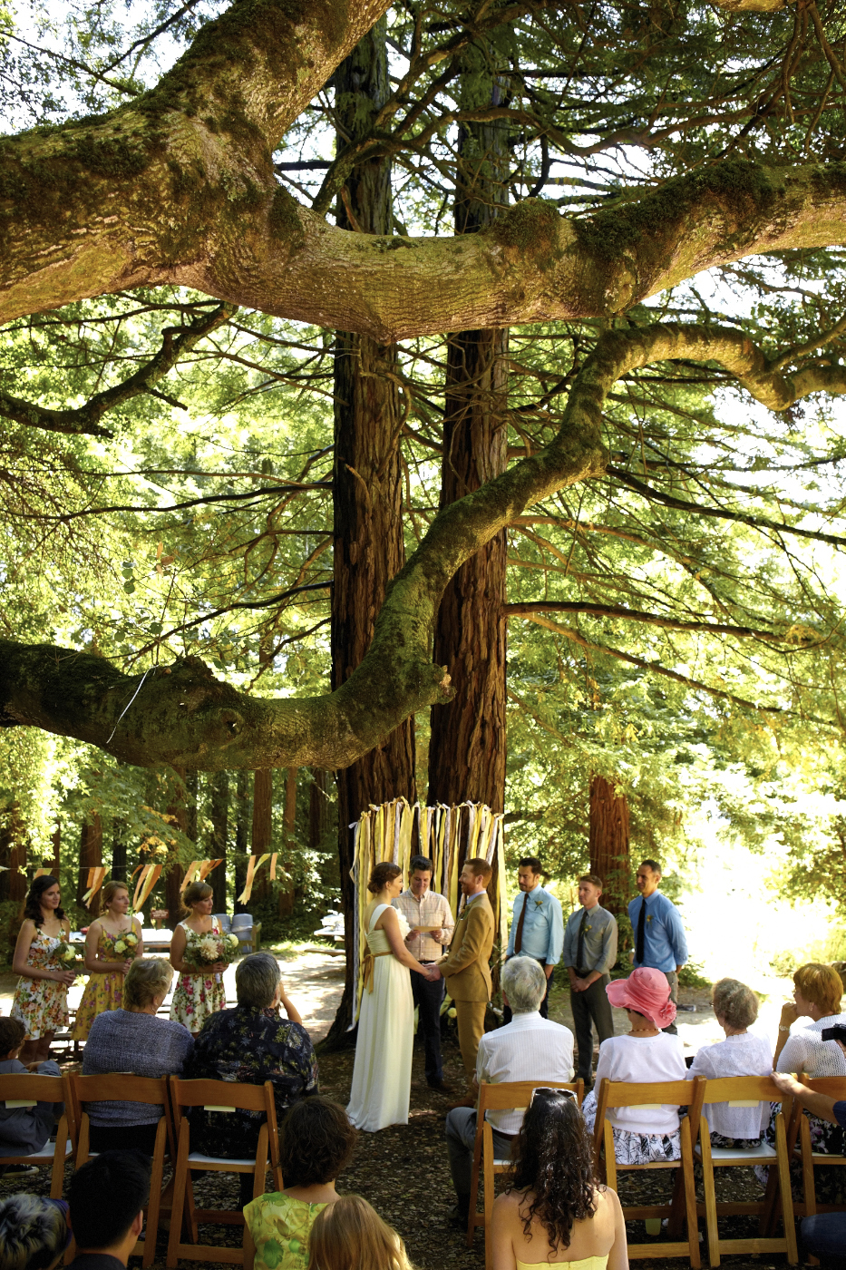 Magnolia Weddings Blog East Bay Redwood Wedding