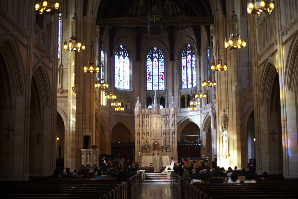 A wider view of the cathedral